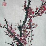 ZhaoXiaFang01
